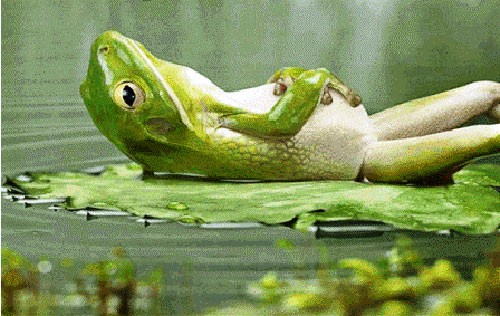 Ανέκδοτο:Ο βάτραχος της ζωντοχήρας
