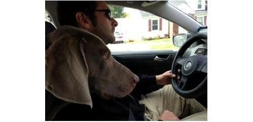 Γυναίκες ή άντρες; Ποιοι είναι καλύτεροι οδηγοί;