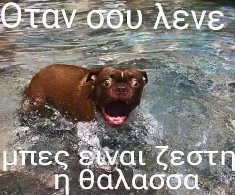 40 αστείες ελληνικές φωτογραφίες γεμάτες γέλιο και σάτιρα