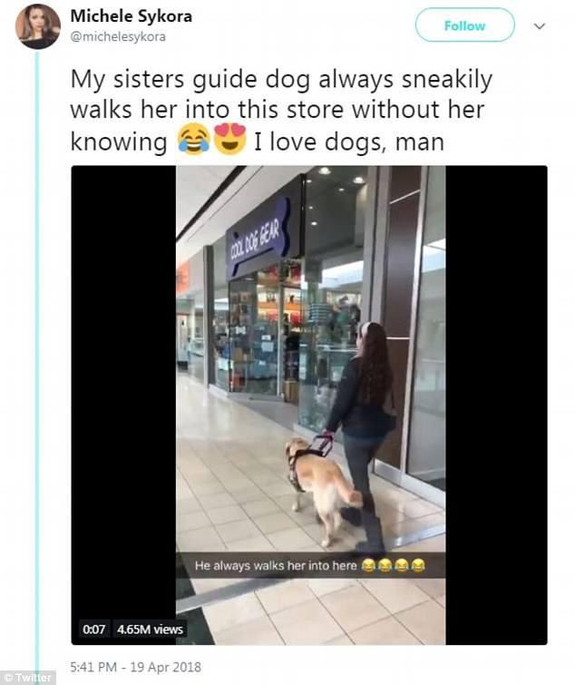 Σκύλος οδηγός πηγαίνει την ιδιοκτήτριά του σε Pet Shop για να του ψωνίσει λιχουδιές