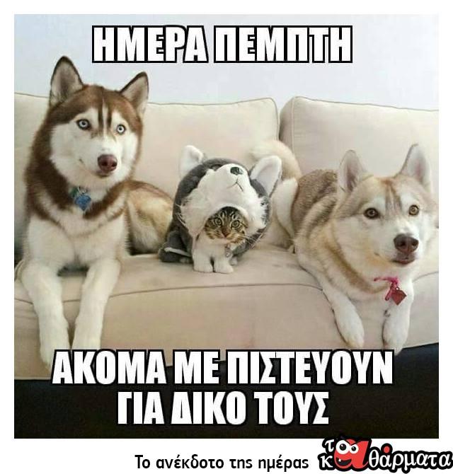 ΗΜΕΡΑ ΠΕΜΠΤΗ..