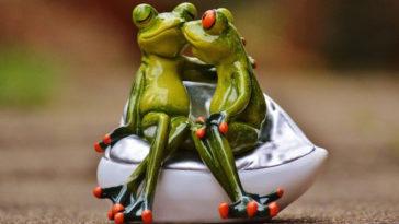 Ανέκδοτο: Στον σύμβουλο γάμου...
