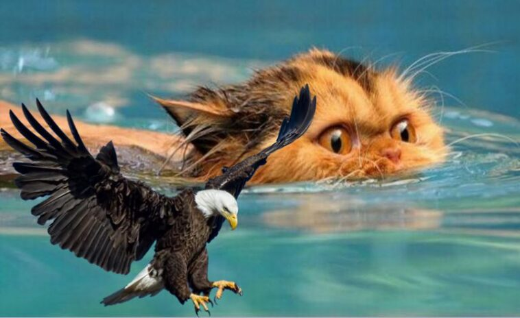 Ανεκδοτάρα! Όσο πιο μεγάλο είναι το πουλί…