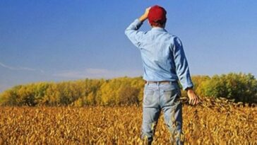 Ανέκδοτο: Ο αμαρτωλός αγρότης